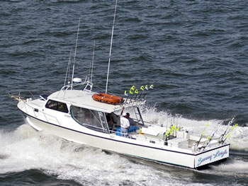 chesapeake bay fishing charters