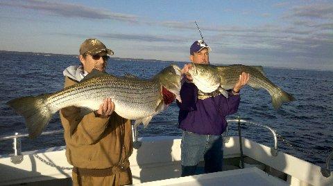 chesapeake beach fishing, chesapeake bay striper fishing charters, Fishing Bait
